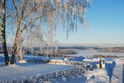 vinter 004.jpg